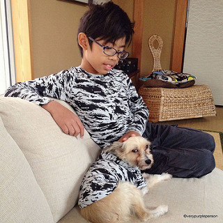Boy tee and dog hoodie