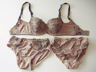 Bronze bra and panties set